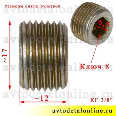 """На фото размер пробки блока цилиндров ЗМЗ-409, 406, УМЗ-421 для УАЗ, ГАЗ и др,  296563-П29, резьба КГ 3/8"""""""
