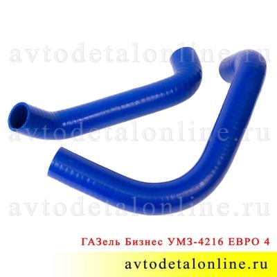 Патрубки радиатора ГАЗель 3302 Бизнес с УМЗ-4216 Евро-4, силикон Технопартнер 33023-1303010, 33023-1303025