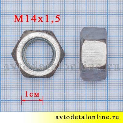 Размер гайки М14*1,5 серьги УАЗ 250559-П29, фото