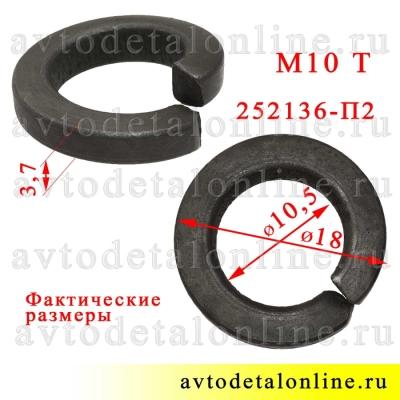 Шайба 10 пружинная Тяжелая, фото с размером гровера 252136-П2