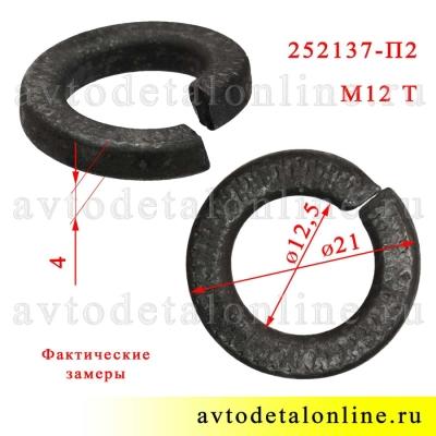 Шайба 12 пружинная Тяжелая, фото с размером гровера 252137-П2