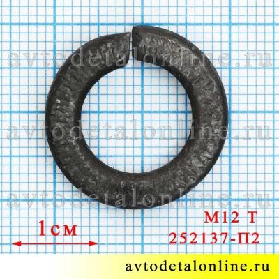 На фото размер шайбы гроверной М12 Т (тяжелой), каталожный номер пружинной шайбы 252137-П2