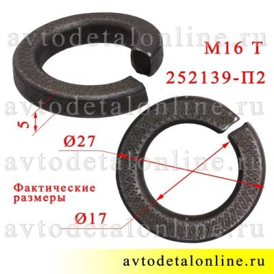 Шайба пружинная 16 Тяжелая, фото с размером гровера 252139-П2