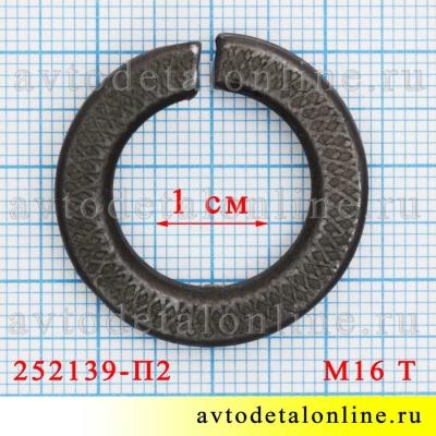На фото размер шайбы гроверной М16 Т (тяжелой), каталожный номер пружинной шайбы 252139-П2
