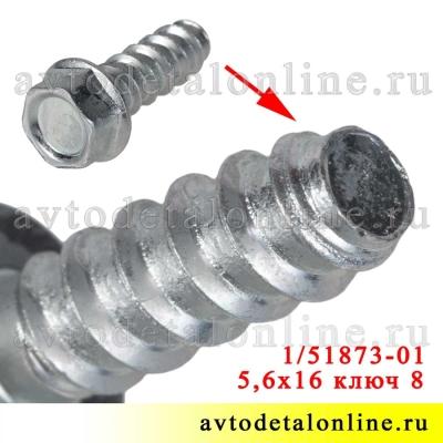 Винт самонарезающий 5,6х16 под ключ 8, каталожный номер 00001-0051873-018, БелЗАН