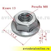 На фото размер гайки М8 с фланцем, шаг резьбы 1,25, высота 8 мм, шестигранная, Красная Этна