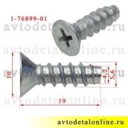 Размеры винта с потайной головкой 5,6*19 применяется в ВАЗ, Lada 01-0076899-018