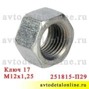 Гайка М12х1,25, ключ 17 применяется в головке блока ЗМЗ-402, УМЗ-421, 417 на УАЗ и ГАЗ  251815-П29